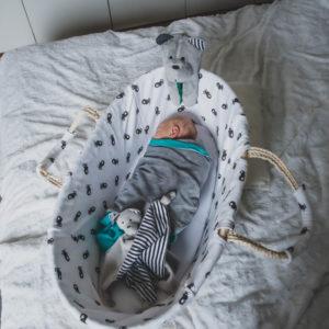 niemowlak śpiący w koszyku, z sensorycznym misiem sensorycznym Whisbear na brzegu