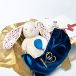 E-zzy Luna the Humming Bunny with an app and the CRYsensor function